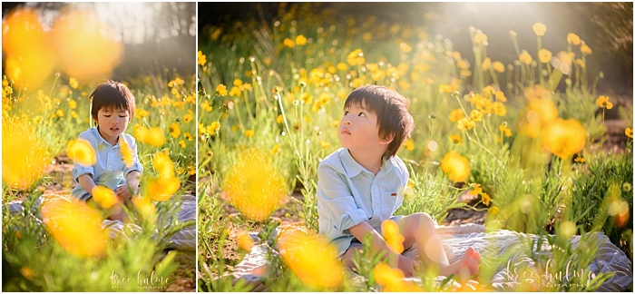 Stunning outdoor child portraits by child photographer Bree Hulme Photography on Sydney's Northern Beaches. Yellow Flower field portraits for summer.