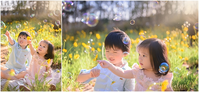 Stunning outdoor child portraits by child photographer Bree Hulme Photography on Sydney's Northern Beaches. Yellow Flower field portraits for summer. yellow flowers and bubbles for joy and happiness.